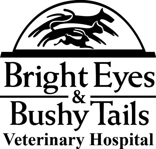 Bright Eyes & Bushy Tails Vet Hospital supports FACF