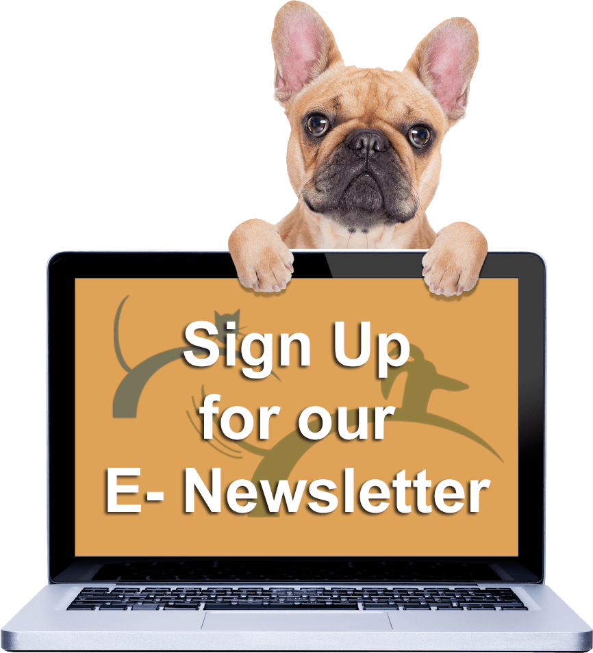 Sign up for our E-Newsletter.